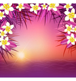 Tropical sunset and sea vector image vector image