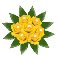yellow roses with pearls vector image vector image
