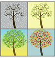 trees collection - four seasons vector image