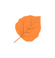 aspen leaf logo vector image