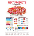 infographics on butchery meat products vector image vector image