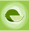 lime with green slice citrus isolated background vector image vector image