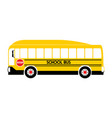 school bus yellow vector image