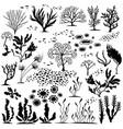 set of handdrawn underwater plants vector image vector image