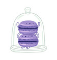 violet macarons characters vector image