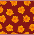 yellow chrysanthemum on red background vector image