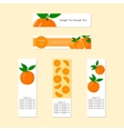 Banners with Ripe Juicy Orange Fruit vector image vector image