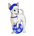 color image a white chihuahua in blue christmas vector image vector image