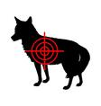 Coyote crosslines vector image