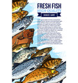 fresh fish catch poster for market vector image vector image