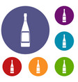 glass bottle icons set vector image vector image