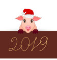 pig is the symbol of the new 2019 vector image