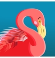 portrait of a flamingo vector image vector image