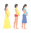 pregnant woman design vector image