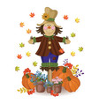 scarecrow doll cute drawing pumpkin and vector image vector image