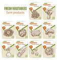 vegetables or veggies sketch price menu vector image vector image