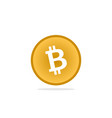 bitcoin template vector image