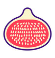 fig flat icon fruit and diet graphics vector image vector image