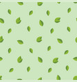 foliage seamless pattern background with green vector image