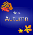 hello autumn blue vector image vector image