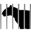 Leopard in zoo vector image vector image