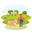 man cattleman with shepherd dog vector image vector image