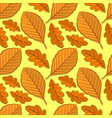 seamless pattern with oak and beech autumn leaves vector image