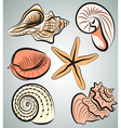 Shells3 vector image vector image