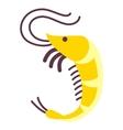 shrimp isolated on white background flat icon vector image