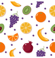 Fruits Background Seamless Pattern with Fruits vector image vector image