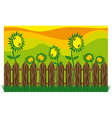 Garden sunflowers vector | Price: 1 Credit (USD $1)