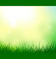 grass sky sun ladybug summer background vector image vector image