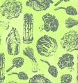 Seamless pattern with hand drawn green vegetables vector image