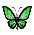 abstract big green butterfl vector image vector image
