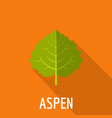 aspen leaf icon flat style vector image vector image