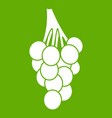 grapes icon green vector image vector image