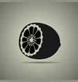 half a lemon icon vector image