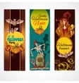 Halloween colored banners vertical vector image