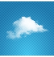Realistic cloud on transparent background vector image vector image