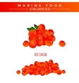 Red Caviar Marine Food vector image vector image