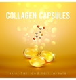 Collagen Formula Capsules Golden Background POster vector image