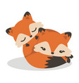 cute fox sleep with bafox vector image vector image