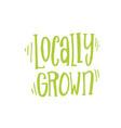 handdrawn lettering from organic market kit vector image vector image