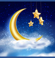 magic night sky with moon stars cloud vector image