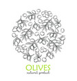 modern engraving olives vector image