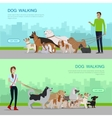 Professional Dog Walking Service Banners Set vector image vector image