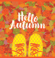 autumn banner with inscription and blue shoes vector image