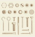 bolt screws and nail vector image vector image