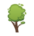 Cartoon tree isolated on white vector image vector image