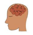 human brain inside head icon image vector image vector image